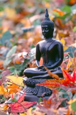 buddha in autumn leaves